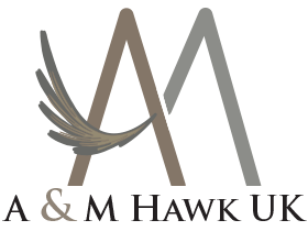 AM Hawk Retina Logo